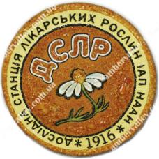 Логотип из янтаря (круглый)
